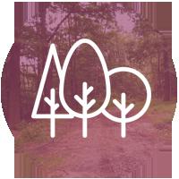 zielona okolica ikona - Start